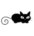 Black cat lying down on white background