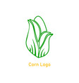 corncob logo design yellow corn seed and green vector image vector image
