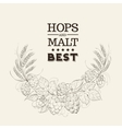 Decorative hops cover vector image vector image