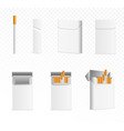 realistic 3d cigarettes and cartons or packaging vector image vector image