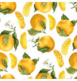 seamless pattern with orange fruits and slices vector image vector image