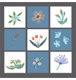 set of cute floral cards or prints poster vector image