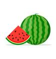 watermelon background bite icon melon food vector image vector image