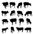 Cow Set vector image vector image