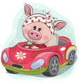 cute pig girl goes on the car vector image vector image