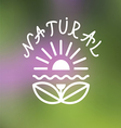 Floral emblem on blurred background vector image