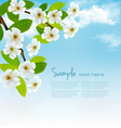 Nature background with blossoming tree brunch and vector image vector image