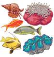 reef animals set vector image vector image