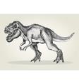 Sketch of a tyrannosaurus rex vector image