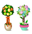 two trees in pots with leaves and easter eggs vector image