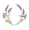the lavender garland vector image
