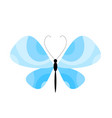 blue summer butterfly vector image vector image
