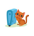 brown kitten warming his paws on heating radiator vector image