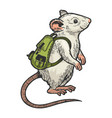 cartoon mouse and backpack color sketch