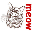 cat says meow vector image vector image