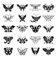 collection of various black butterflies vector image