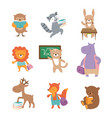 cute school animals bear raccoon lion hare hippo vector image