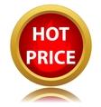 Hot price icon vector image