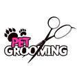 pet grooming vector image vector image