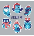 Set of stickers with Christmas owls in knitted vector image