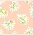 snow white agapanthus on light orange background vector image vector image