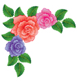 colorful roses vector image