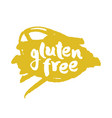 calligraphy gluten free label on a scribble vector image vector image