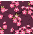 Cherry blossom seamless flowers pattern vector image vector image