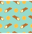 Perfect seamless pattern with sicilian cannoli vector image