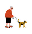 senior woman walking with her dog old lady and vector image vector image