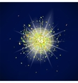 Sparkling Texture Star Flash vector image vector image