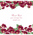Anemone flowers Card vector image