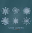 flower geometric vector image
