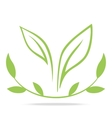 Green leafs and laurel wreath - sign vector image vector image