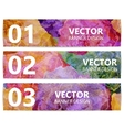 Set of floral banners or backgrounds Abstract vector image