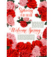 spring holiday flowers roses floral poster vector image vector image