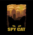 spy cat vector image vector image