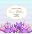 violet purple crocus flowers wedding invitation vector image vector image