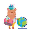 back to school bear books globe map backpack vector image vector image