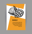 banners with mango black-white design with fruit vector image vector image