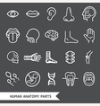 Human anatomy body parts detailed icons set vector image vector image