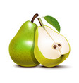 realistic detailed 3d green whole pear and slices vector image vector image