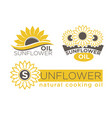 sunflower natural cooking oil product vector image