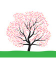 tree with blossom vector image vector image