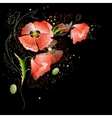 Black Background with Red Poppy Flowers vector image