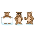 Grizzly Bear Mascot happy vector image vector image
