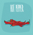 isolated ripe capsicum fruits or red hot pepper vector image