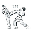 karate fight vector image