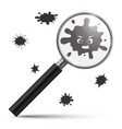 magnifying bacteria contamination infection germ vector image