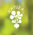 Natural food emblem vector image vector image